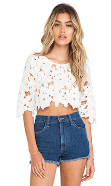 Toby Heart Ginger Daisy Delight Crop Top in White