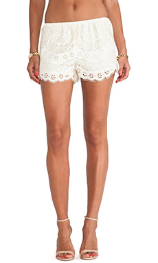 Twelfth Street By Cynthia Vincent Lace Shorts in Cream