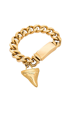Wanderlust + Co Shark tooth ID Bracelet in Gold