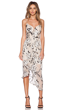 Zimmermann Fortune Burnout Dress in Floral