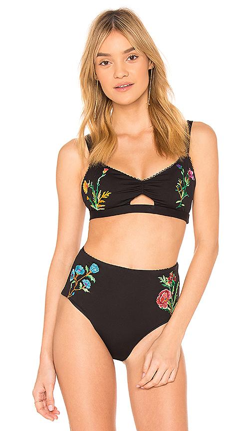 Agua Bendita Rafaella Bikini Top in Black