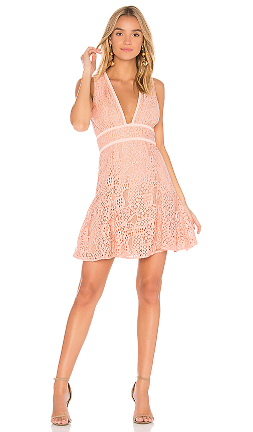 aijek Mae Plunge Lace Dress in Blush