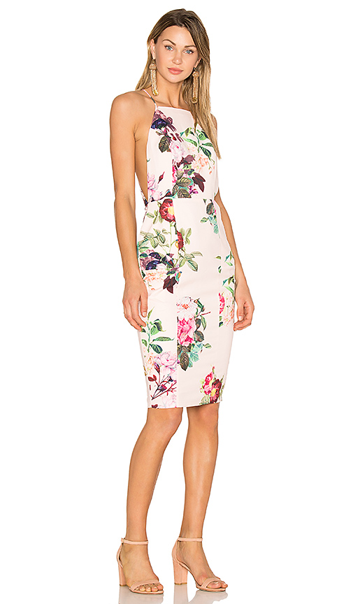 AIRLIE Isolla Bella Midi Dress in Pink. - size L (also in M,S,XS)