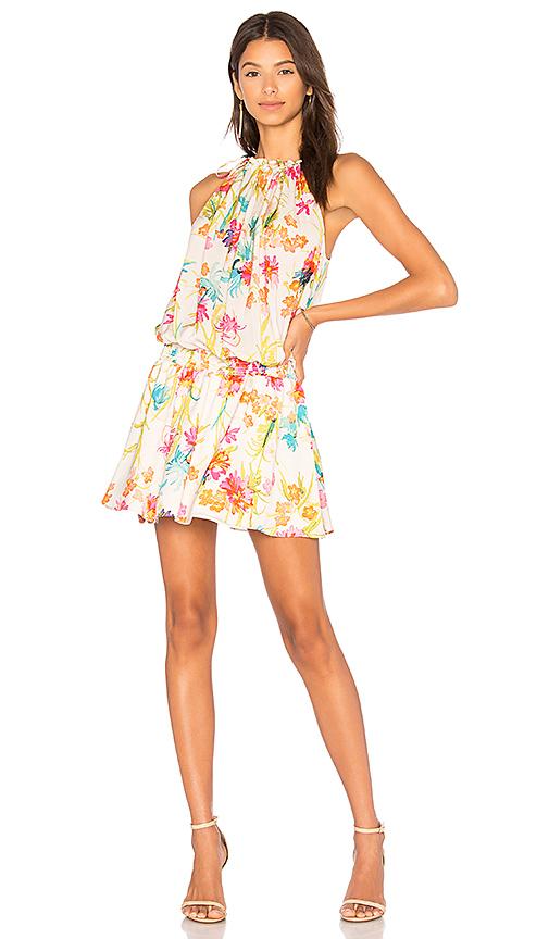 Amanda Uprichard Emlyn Dress in Cream
