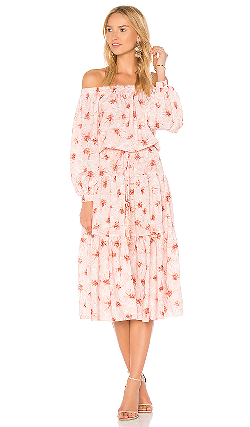 Alexis Tilia Dress in Pink