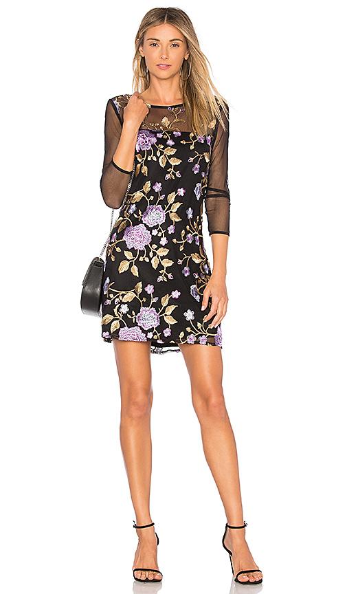 BB Dakota JACK by BB Dakota Jaelyn Dress in Black