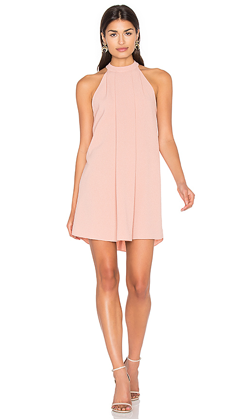 Bishop + Young Cameron Dress in Blush