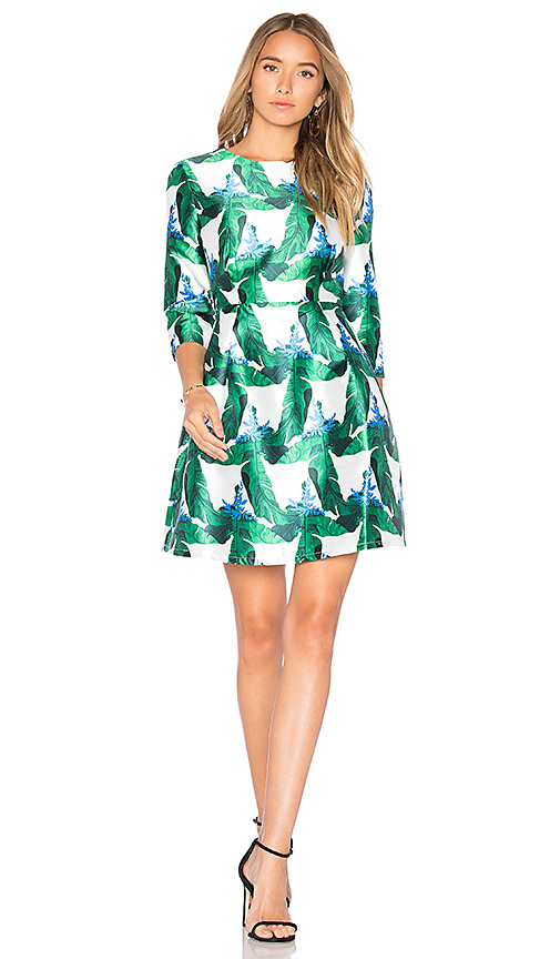 BLAQUE LABEL Fit & Flare Dress in Green