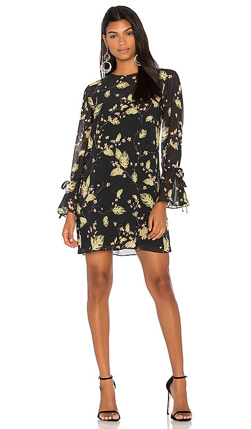 Bobi BLACK Chiffon Shift Dress in Black
