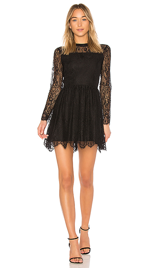 Bobi BLACK Paradise Lace Fit and Flare Dress in Black