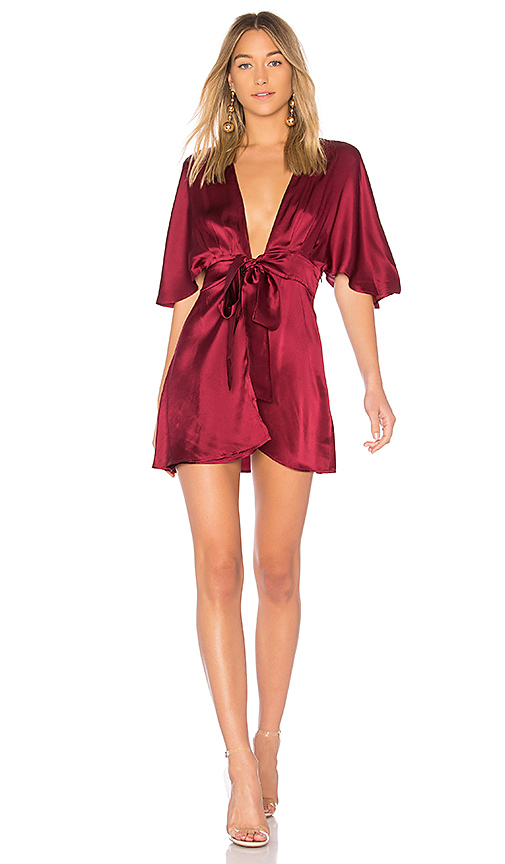 CAMI NYC The Lane Dress in Wine