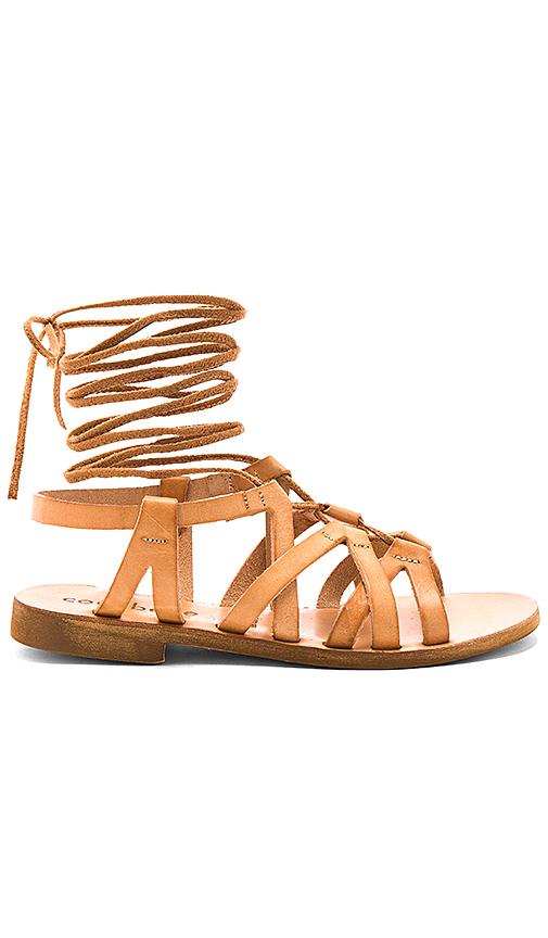 cocobelle Cleo Sandals in Tan