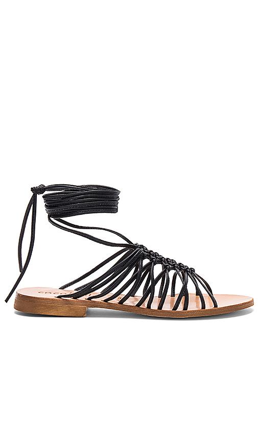 cocobelle Alexia Sandals in Black