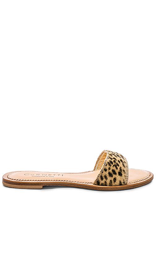 CoRNETTI Cannucce Sandal in Brown