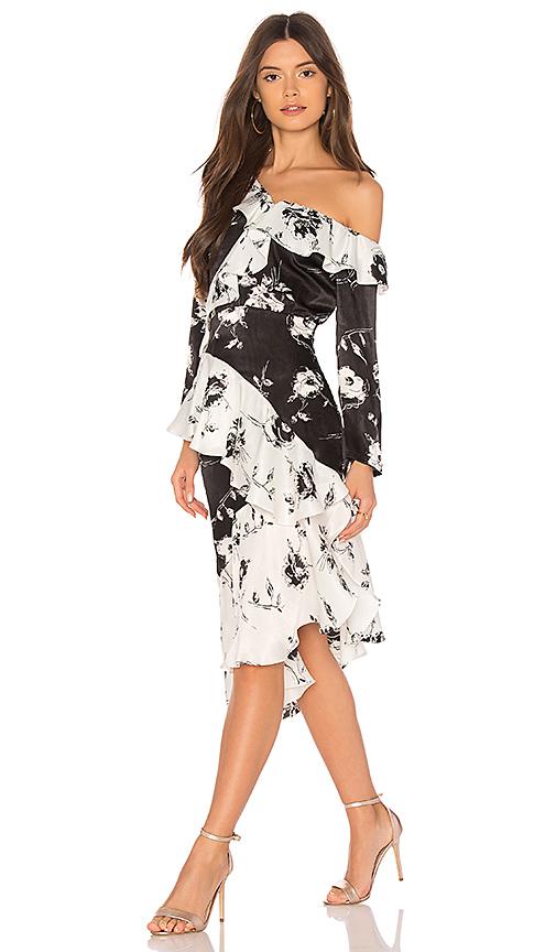 DELFI Lily Dress in Black & White
