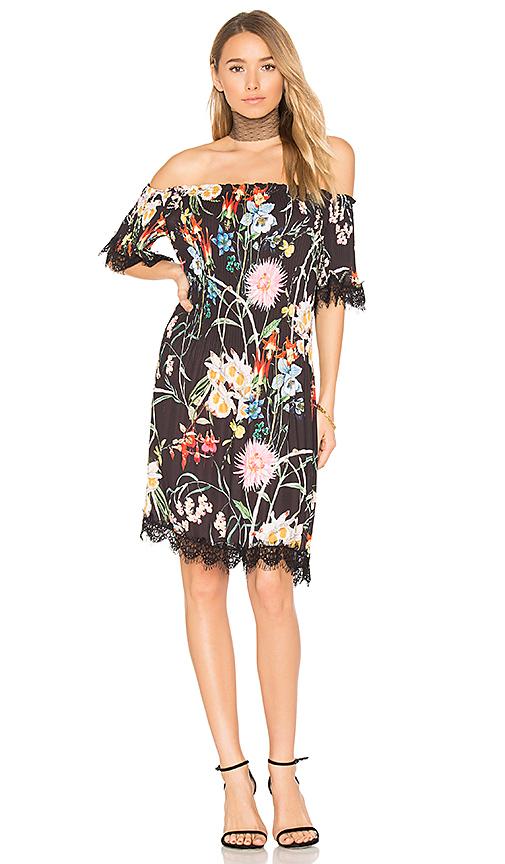 DELFI Rebecca Dress in Black