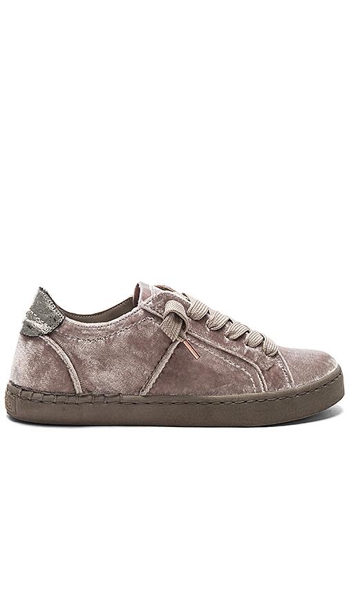 Dolce Vita Zalen Sneaker in Gray