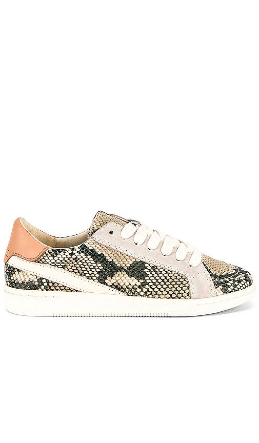 Dolce Vita Nino Sneaker in White. - size 8 (also in 10,6,6.5,7,7.5,8.5,9,9.5)