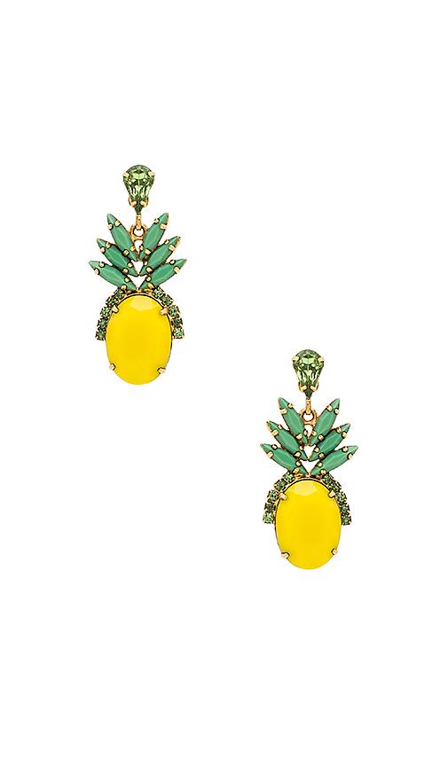 Elizabeth Cole Pineapple Studs in Metallic Gold