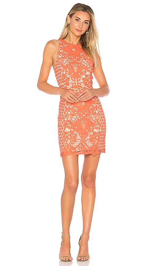 Endless Rose High Neck Floral Crochet Dress in Coral