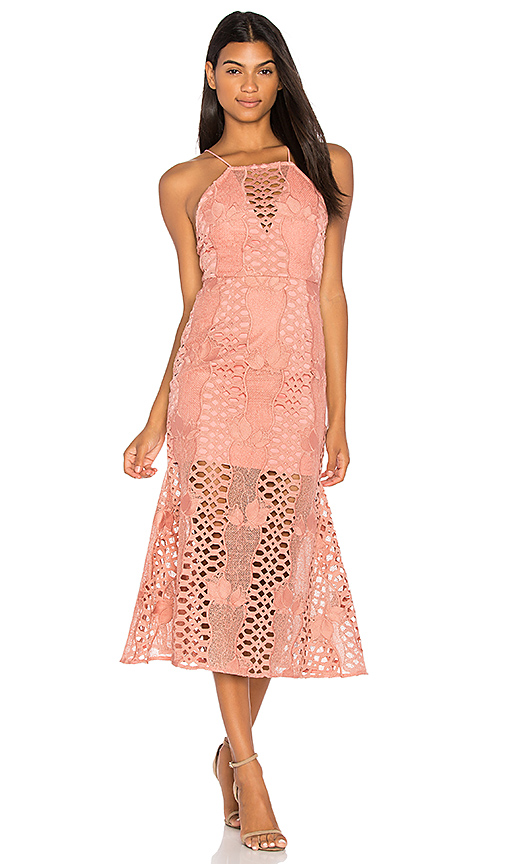 Endless Rose Mermaid Fit Lace Dress in Pink