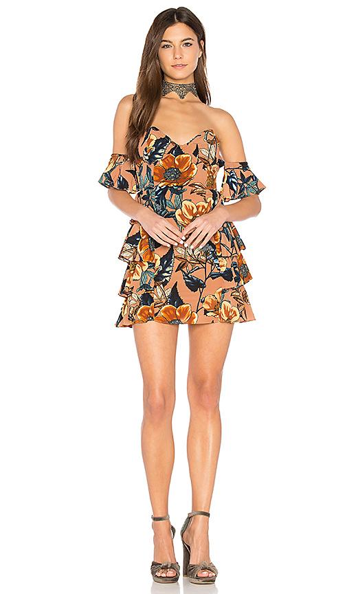 For Love & Lemons Flamenco Strapless Dress in Brown