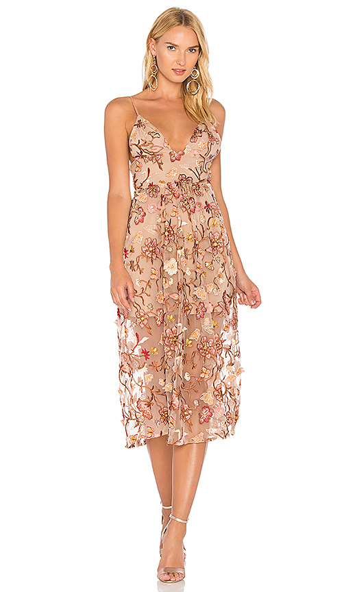 Photo of For Love & Lemons Botanic Midi Dress in Brown - shop For Love & Lemons dresses sales