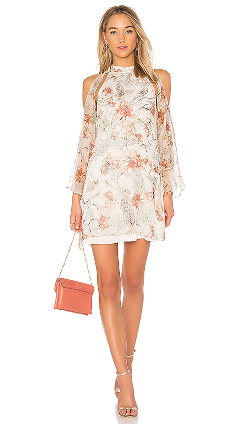 Haute Hippie Paradise Dress in Ivory
