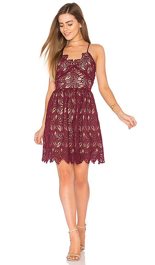 J.O.A. Fit And Flare Lace Dress in Burgundy. - size L (also in M,S,XS)