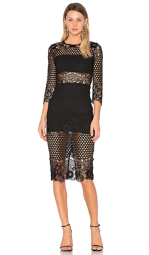 Karina Grimaldi Shell Lace Dress in Black