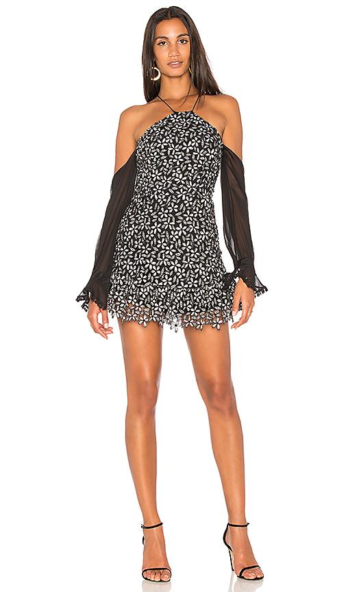 Karina Grimaldi Lia Lace Mini Dress in Black & White