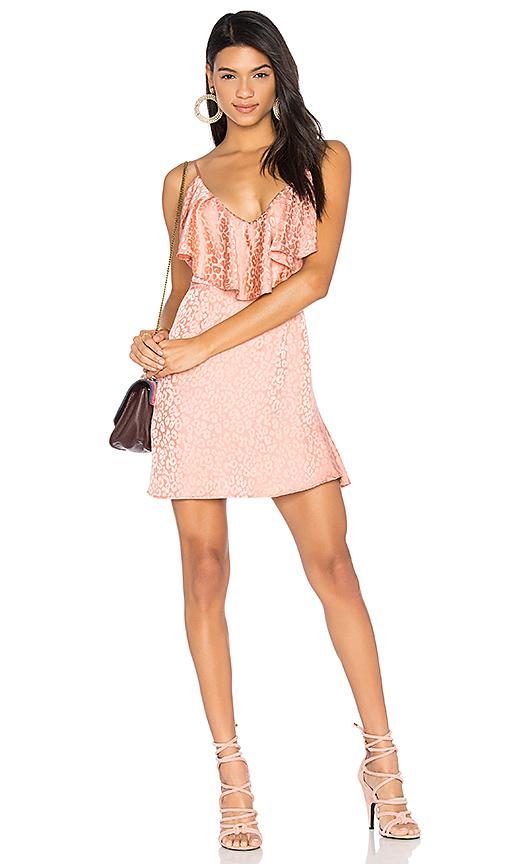 LPA Dress 164 in Pink