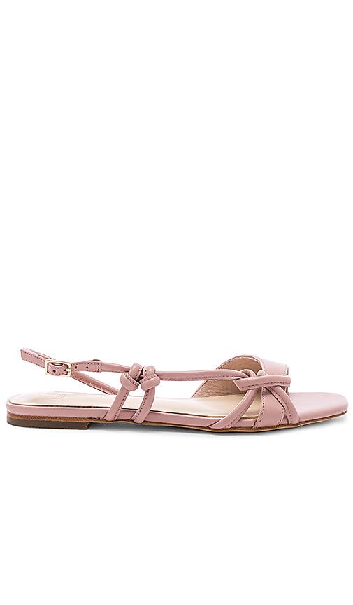 LPA Fran Sandal in Pink