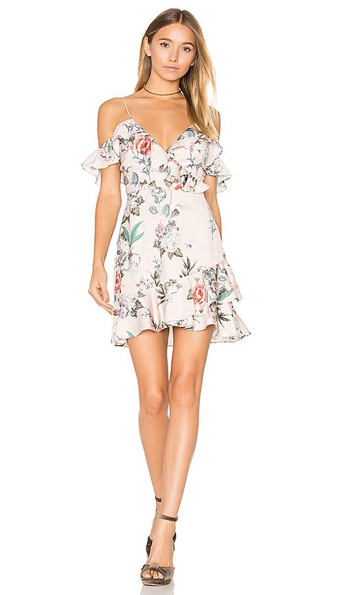 MAJORELLE Salsa Dress in Blush