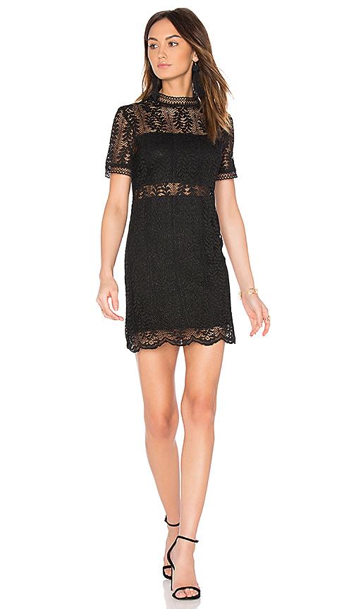 MINKPINK Tell Tale Lace Dress in Black