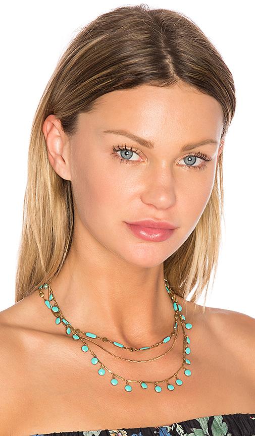 Natalie B Jewelry Havana Choker in Metallic Gold