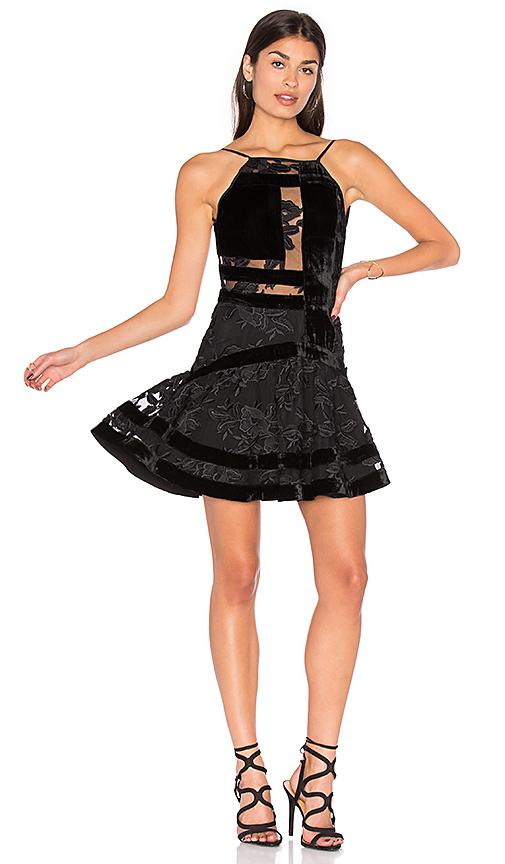 NBD Eva Dress in Black