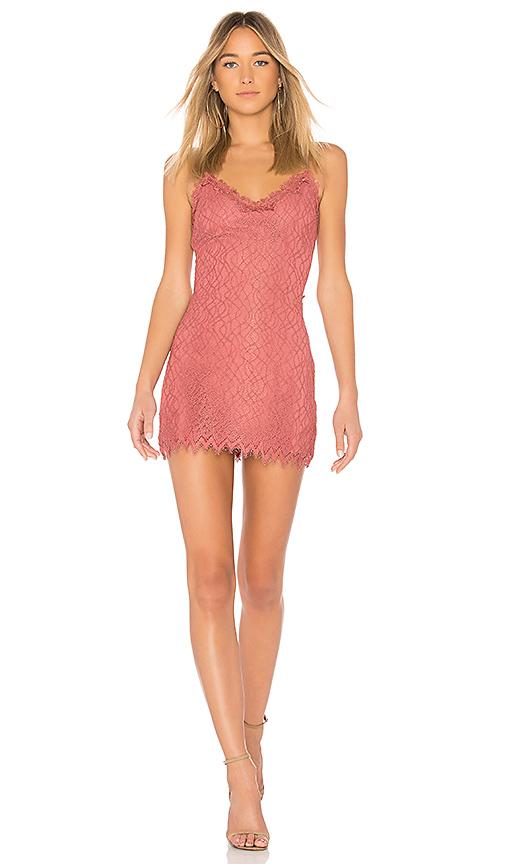 NBD Aiesha Dress in Rose