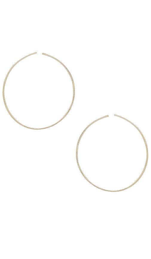 Paradigm Large Degree Hoops in Metallic Silver
