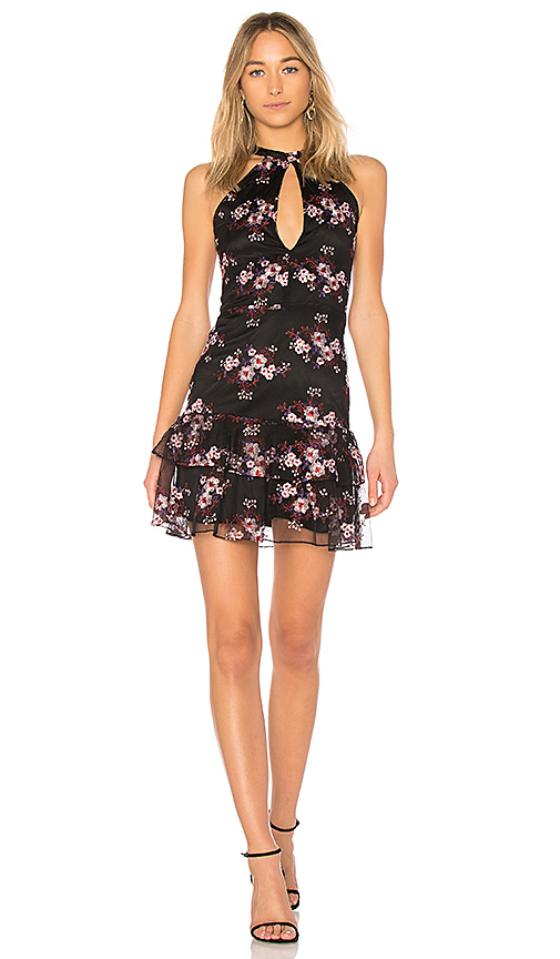 Parker Luana Dress in Black