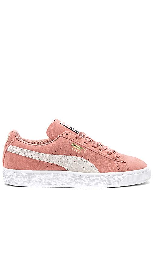 Puma Suede Classic Sneaker in Rose