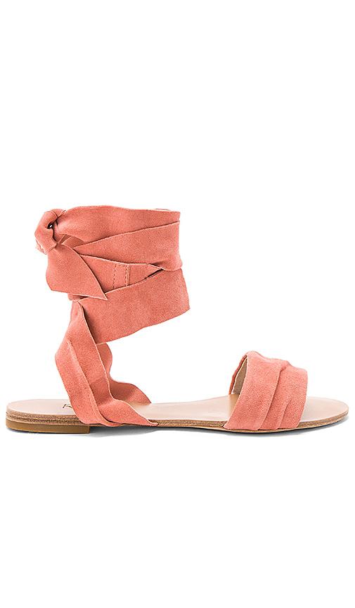 RAYE Sashi Sandal in Coral