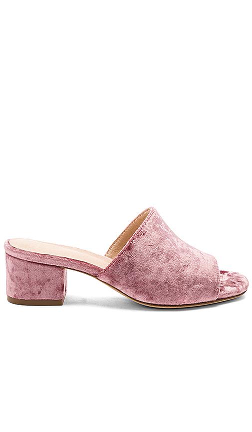 RAYE Cara Mule in Pink