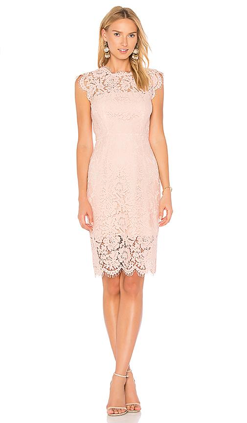 RACHEL ZOE Suzette Dress in Blush