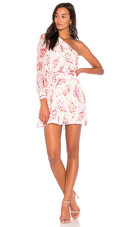 RACHEL ZOE Barnes Dress in Pink