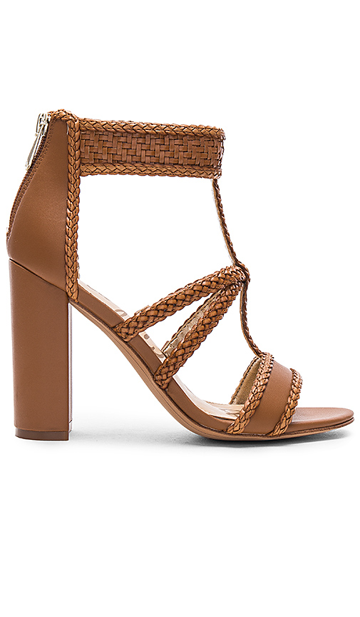 Sam Edelman Yordana Heel in Brown