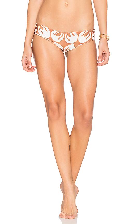 Stone Fox Swim Jessie Bikini Bottom in Red
