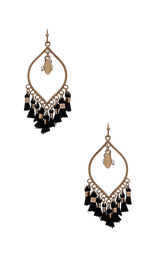 SHASHI Mira Earring in Metallic Gold