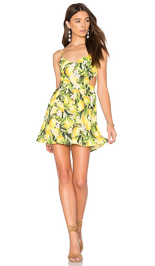 Show Me Your Mumu Piper Dress in Yellow