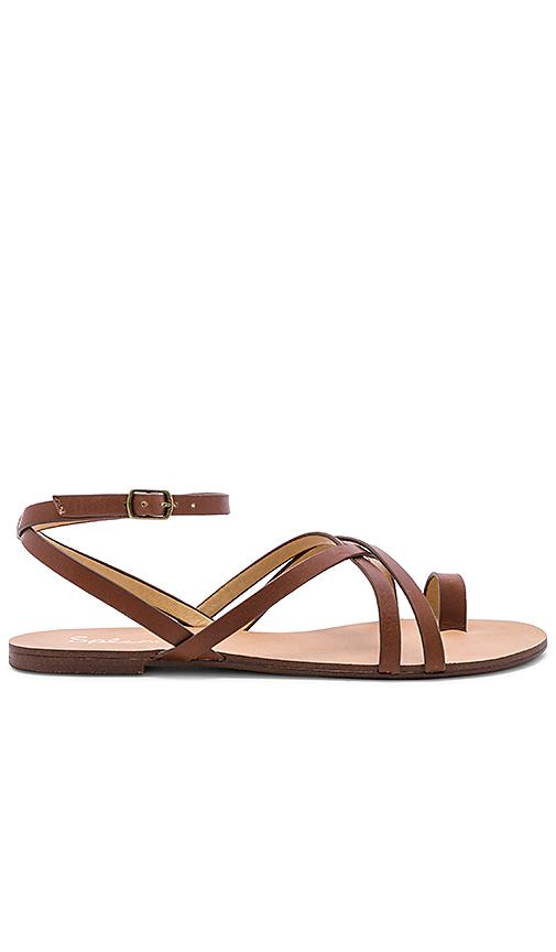 Splendid Sully Sandal in Brown
